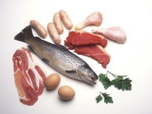 protein-based diet
